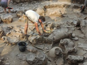 A storage room unearthed from the ruins of a 1700 B.C. Canaanite palace in northern Israel held the remains of 40 ceramic jars. Image courtesy of Eric H. Cline/George Washington University.