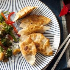 pork-dumplings-recipe-photo-420-FF0210DUMPW08