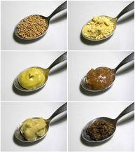 Variations of mustard.