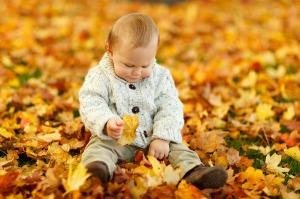 autumn-165184_1280