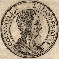 Portrait of Lucius Junius Moderatus Columella.