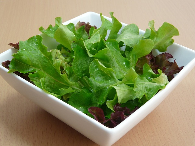 Bon appetit wednesday an ancient roman salad antiquitynow - Diferentes ensaladas de lechuga ...