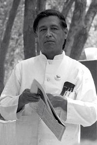 César Chávez at a United Farmworkers rally, 1974. Image courtesy of http://commons.wikimedia.org/wiki/File:Cesar_chavez_crop2.jpg.