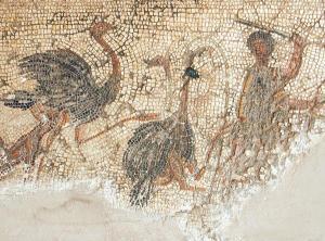 Scene with ostriches, Roman Zliten Mosaic, 2nd century CE.