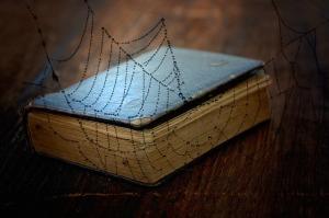 book-758978_640